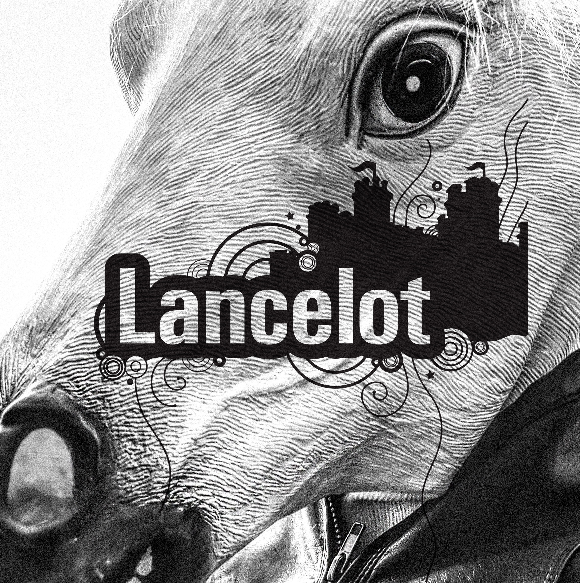 Lancelot - visual identity, graphic system by Color.zone agency for the image! hair salons.