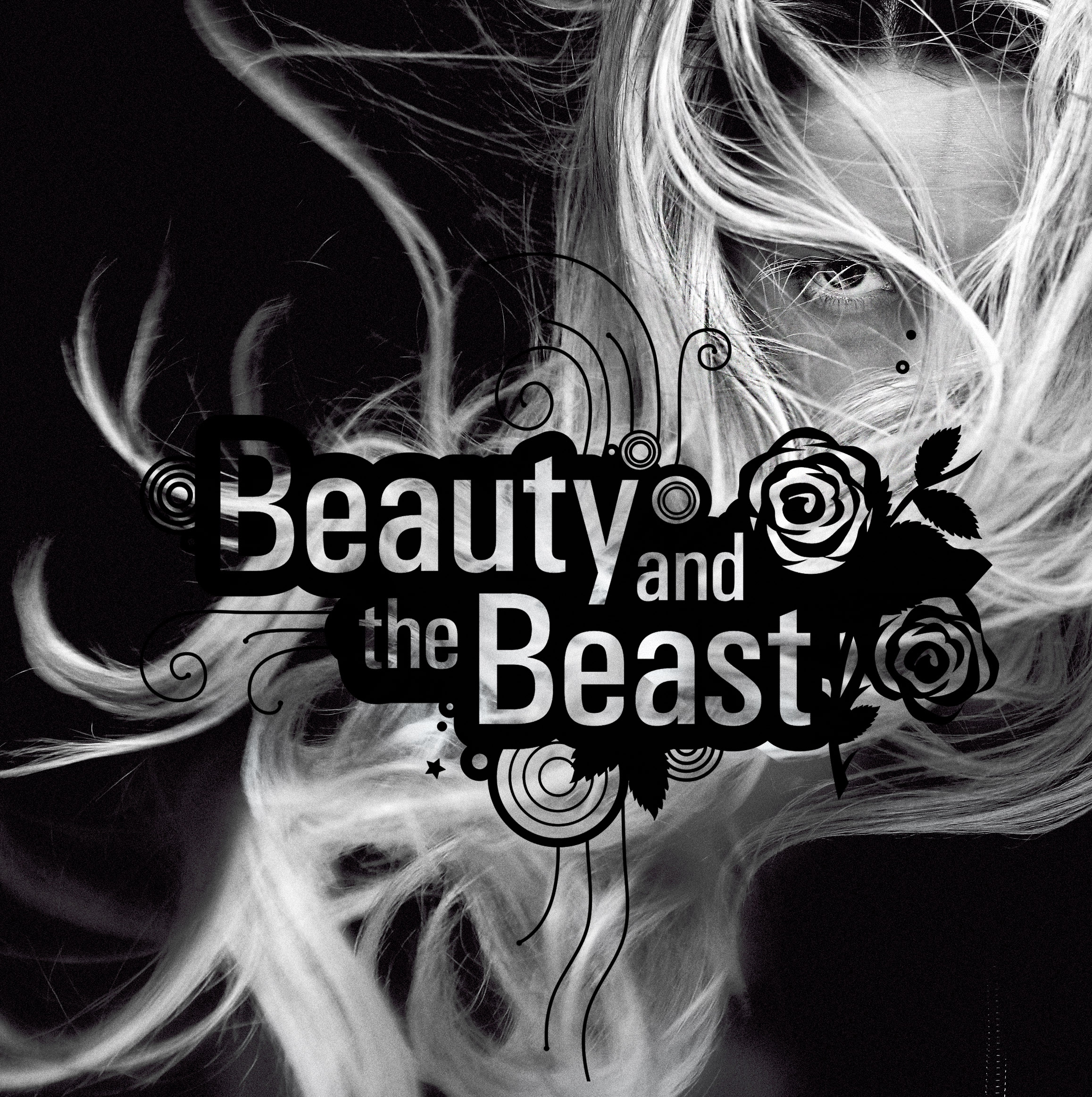 Beauty and the Beast - visual identity, graphic system by Color.zone agency for the image! hair salons.